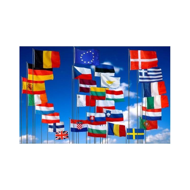 Pavillons officiels des pays de l'Europe à hisser sur un mât - DMC Direct