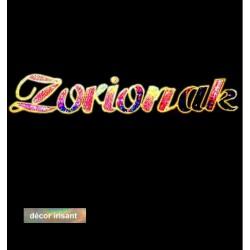 Traversée lumineuse pour rue décor texte voeux en langue Basque