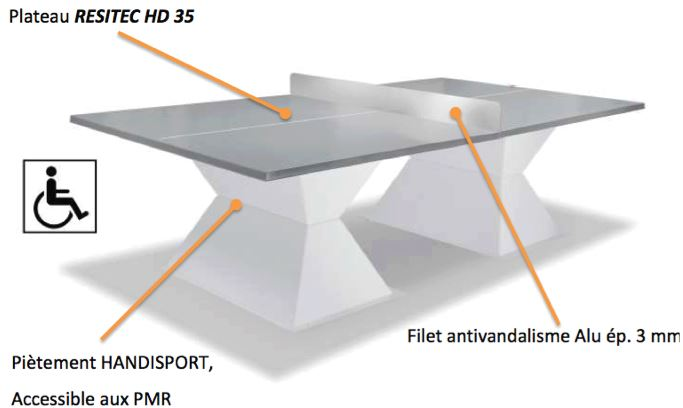 Visuel de la table de ping pong composite plateau gris de DMC Direct